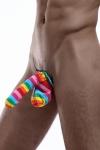 Cache-sexe multicolore